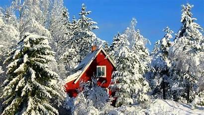 Winter Cabin Snow Mountain Windows Forest Cottage