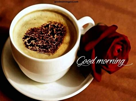 Good Morning Coffee Quotes With Pictures Acrylic Coffee Table South Africa Safavieh Houzz And Glass Quest Benross One Cup Maker Contemporary Tables Los Angeles Dubai
