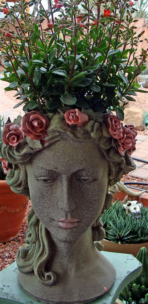 Head Planter With Kalenchoes Planters Garden