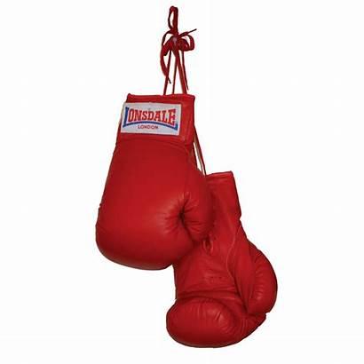 Boxing Gloves Transparent