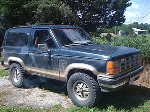 Jtribalsun 1989 Ford Bronco Ii Specs  Photos  Modification