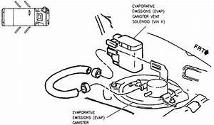 I Have P Code  P0446 Evaporative Emission System Vent