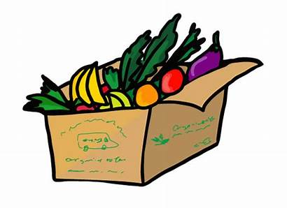 Produce Bins Meal Fish Delivery Meat Kits