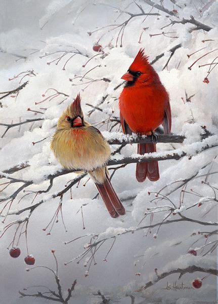cardinal pair cardinals birds