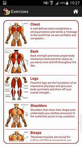 Best Workout Program To Gain Muscle