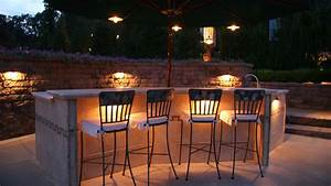 Niteliters professional outdoor landscape lighting