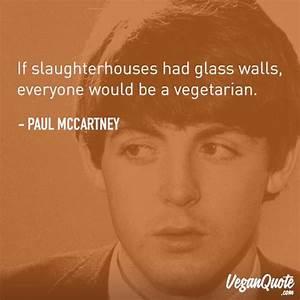 3646 best Vegan images on Pinterest | Animal rescue ...