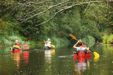 Ohio River Boat Rentals by Olentangy Paddle 187 Kayak And Canoe Rentals 187 Olentangy