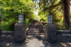 garden brick paver path walkway stock image image