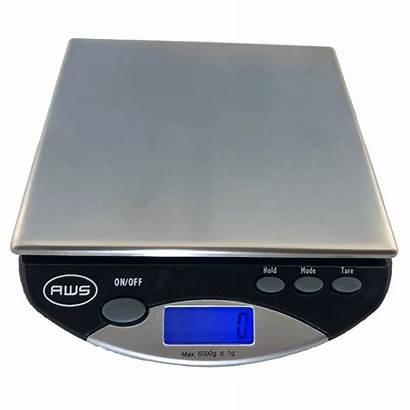Scale Gram Lb Capacity 6000g Alumilite Lbs