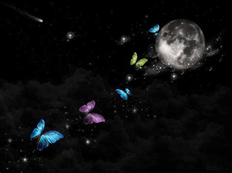 Magic Night By Malekalaneke On Deviantart
