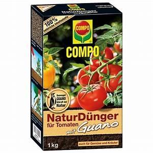Bester Dünger Für Tomaten : compo 11996 naturd nger f r tomaten mit guano 1 kg test ~ Michelbontemps.com Haus und Dekorationen