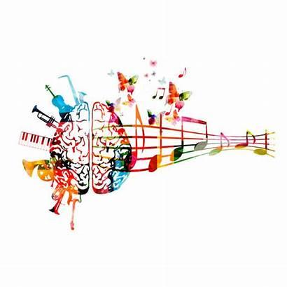 Organ Illustrations Clip Brain Notes Instruments Colorful