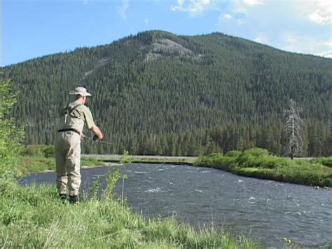 planning  fly fishing trip  yellowstone national park