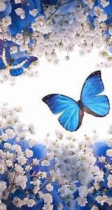 Best 25+ Butterfly wallpaper iphone ideas on Pinterest ...