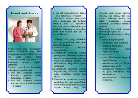Wanita Hamil Leaflet Pemeriksaan Ibu Hamil