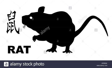 year rat stock year rat stock images alamy