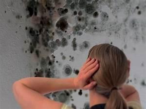 Peinture Pour Mur Humide : peinture anti humidit rennes etancheite produits d ~ Dailycaller-alerts.com Idées de Décoration