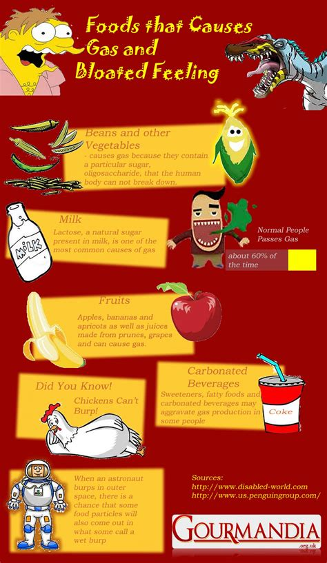 Foods That Causes Gas And Bloated Feeling Visually