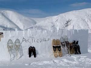 Alaska Winter Adventure Arctic Wild