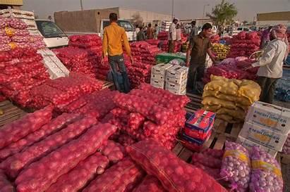 Vegetable Wholesale Market Storage Area Doha Fruit