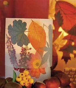 Windlicht Falten Transparentpapier : windlicht aus herbstlaub bild 2 living at home ~ Lizthompson.info Haus und Dekorationen