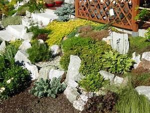 Steingarten Am Hang : steingarten anlegen terrassierte lage bodendecker funkia garten ~ Eleganceandgraceweddings.com Haus und Dekorationen