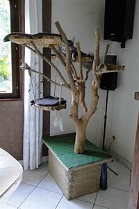 Arbre à Chat Fait Maison : salle de jeux ~ Melissatoandfro.com Idées de Décoration