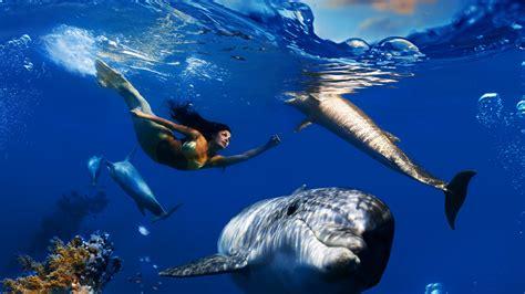 mermaid wallpaper wallpaper mermaid underwater sharks hd creative Underwater