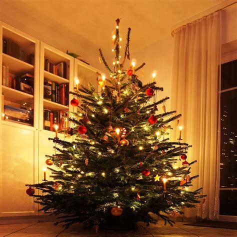 Weihnachtsbaum Lila Geschmückt by Die Geschichte Des Weihnachtsbaumes Baumpflegeportal De