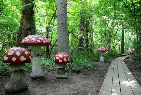 Tērvetes dabas parks fotogrāfijās :: Dienas Bizness