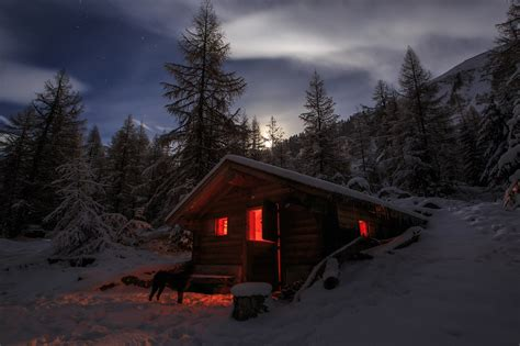 Log Cabin Home Interiors - cozy cabin in the woods