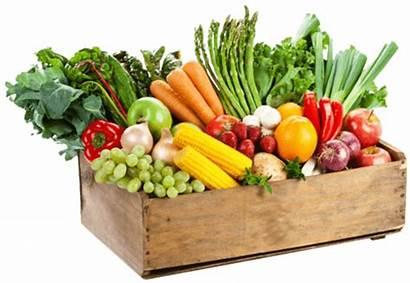 Vegetables Delivery Services