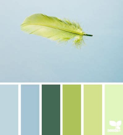 Feathered Color Palette Hues