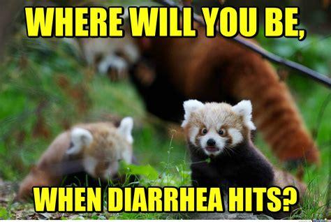Red Panda Meme - that would be panda monium by recyclebin meme center
