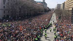 Massive crowds rally across US to demand tighter gun controls