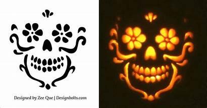 Pumpkin Carving Skull Stencil Patterns Stencils Halloween