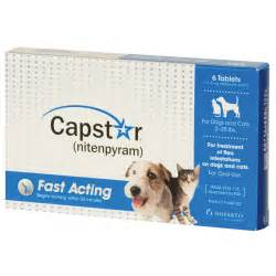 flea pill for cats capstar for cats dogs flea tablets petsolutions