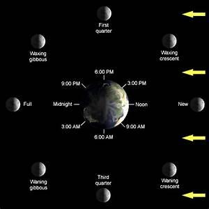 Does The Moon Orbit The Sun