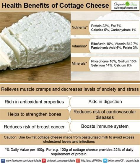 benefits of cottage cheese the world s catalog of ideas