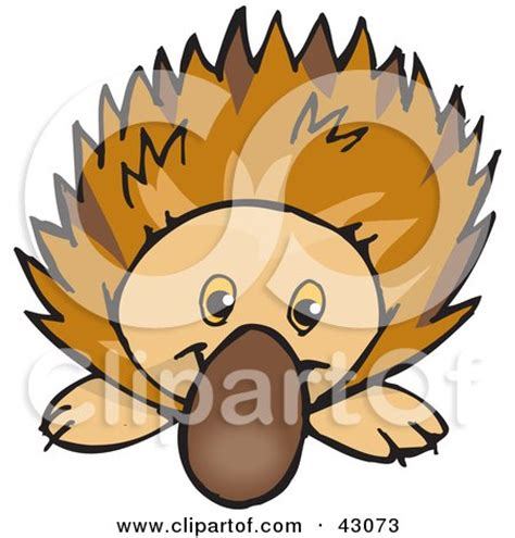echidna clipart royalty free rf anteater clipart illustrations vector
