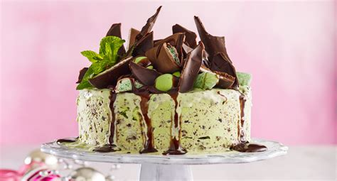 mint choc chip ice cream cake recipe  homes