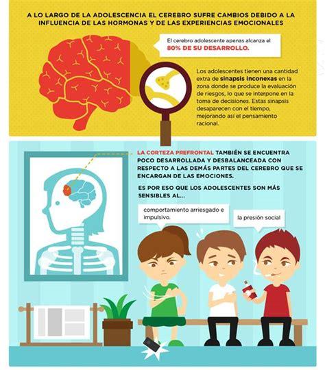 el cerebro de ni os y adolescentes el cerebro de ni 241 os y adolescentes la marihuana afecta