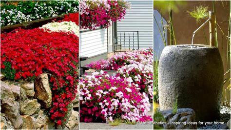 Backyard Garden Florist by 10 Small Flower Garden Ideas To Build A Serene Backyard
