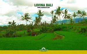 1920x1200 Lovina Bali desktop PC and Mac wallpaper