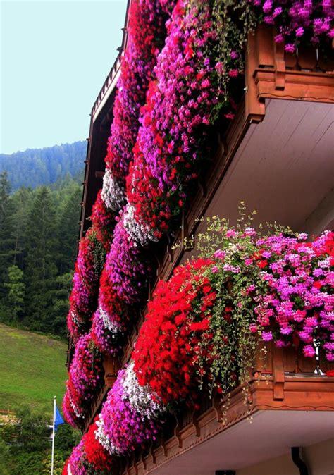 Blumen Für Den Balkon by Blumenkasten F 252 R Balkon Wundersch 246 Ne Bilder