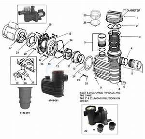 Speck Hydrostar Model 98 Pump Parts