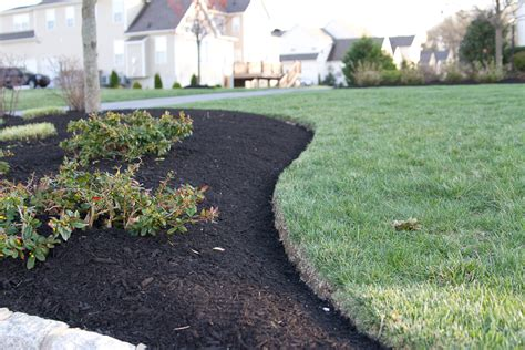 purpose of mulch top 28 purpose of mulch how to use mulch to reduce weeds save water feed your shop