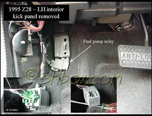 91 Firebird Fuel Relay  91  Free Engine Image For User