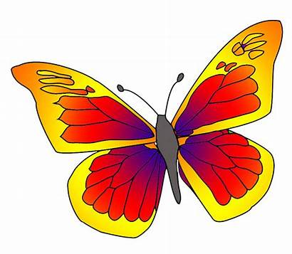 Butterfly Clipart Yellow Orange Butterflies Colorful Clip